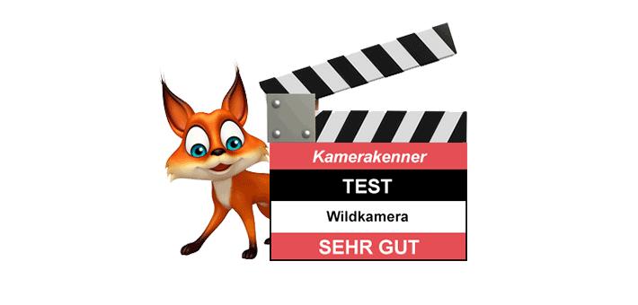 Wildkamera Test